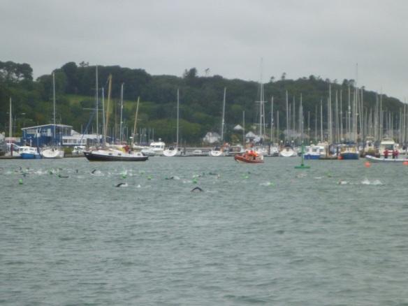 Schwimmer in Crosshaven