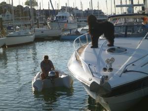 wer möchte Schlauchboot fahren?