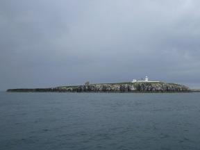 Leuchtturm auf der Insel Farne