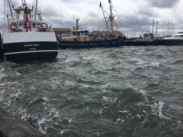 170519_Texel Harbour